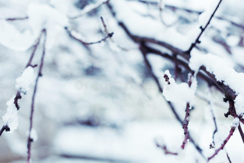 Fundo abstrato do inverno fotografia de stock