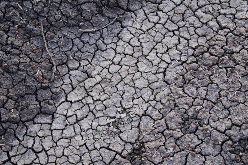 Fundo abstrato do solo seco seca Solo seco cinzento Fundo do solo Fundo rachado do solo Teste padrão da terra Textura do solo rac imagem de stock