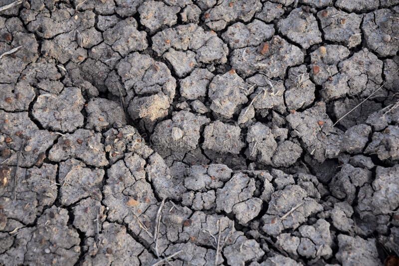 Fundo abstrato do solo seco seca Solo seco cinzento Fundo do solo Fundo rachado do solo Teste padrão da terra Textura do solo rac fotografia de stock royalty free