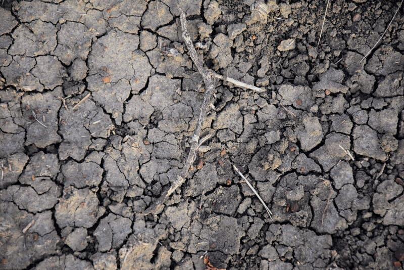 Fundo abstrato do solo seco seca Solo seco cinzento Fundo do solo Fundo rachado do solo Teste padrão da terra Textura do solo rac imagem de stock royalty free