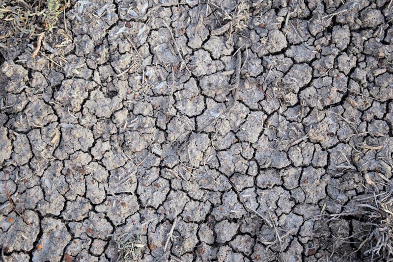 Fundo abstrato do solo seco seca Solo seco cinzento Fundo do solo Fundo rachado do solo Teste padrão da terra Textura do solo rac fotos de stock royalty free