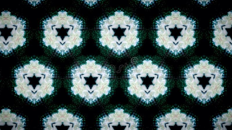 Fundo abstrato do teste padrão de flor branca imagem de stock royalty free