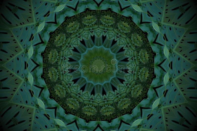 Fundo abstrato do verde esmeralda, teste padrão tropical das folhas com imagens de stock
