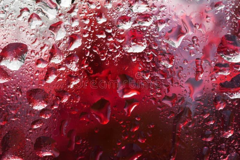 Fundo abstrato vermelho molhado, papel de parede da água da gota fotografia de stock royalty free