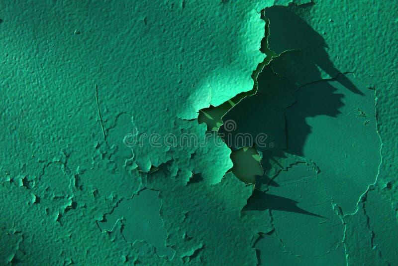 Fundo afiado verde da parede ninguém imagens de stock