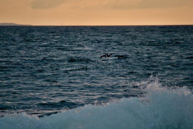 Fundo alaranjado no mar azul foto de stock royalty free