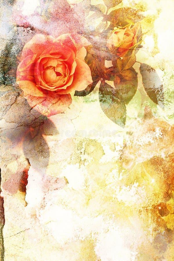Fundo alaranjado romântico das rosas ilustração royalty free