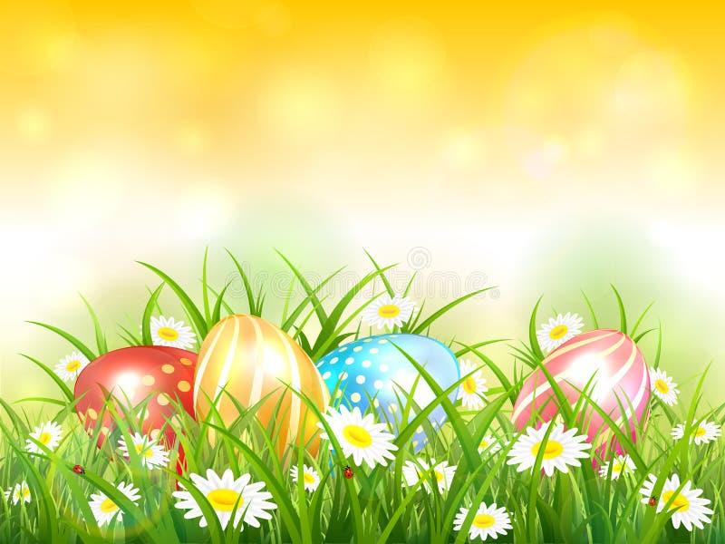 Fundo amarelo da natureza com os ovos da páscoa na grama ilustração stock