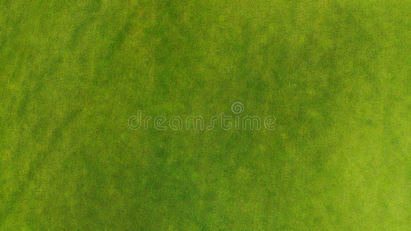 Fundo aparado bonito da textura da grama verde fotografia de stock