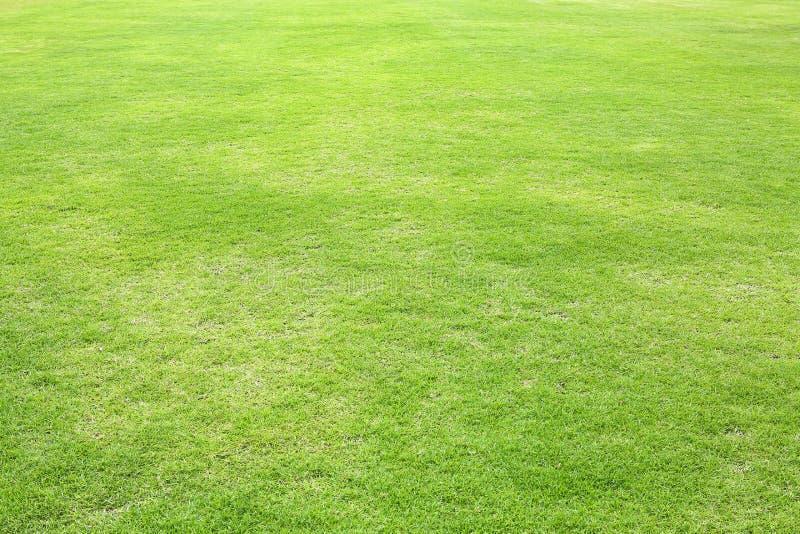 Fundo aparado verde natural do campo de grama para esportes imagens de stock