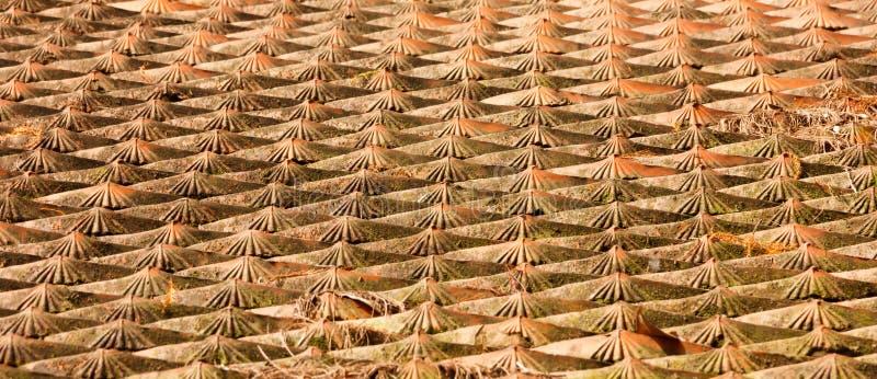 Fundo asiático tradicional envelhecido do teste padrão da telha de telhado Projeto oriental arquitetónico exterior fotografia de stock
