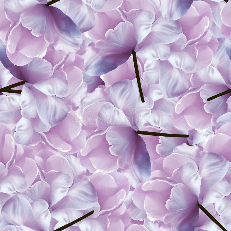 Fundo azul-cor-de-rosa floral infinito sem emenda para o projeto e a impressão Fundo de tulipas naturais fotografia de stock