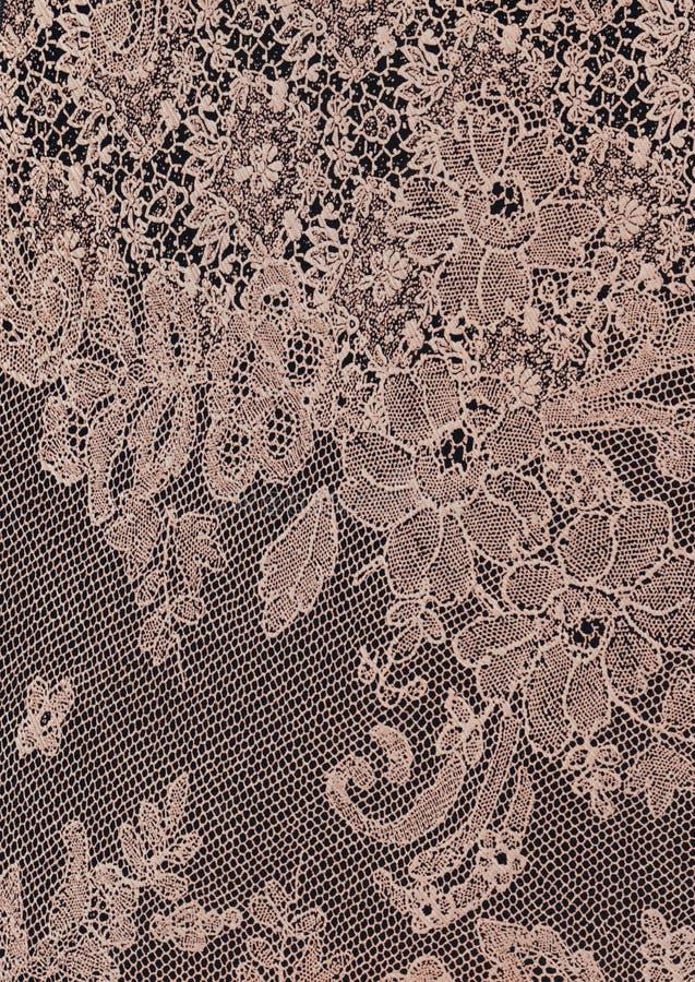 Fundo bege floral da textura do laço do sumário fotos de stock royalty free