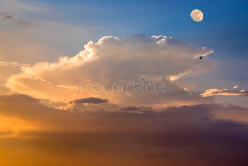 Fundo bonito com as nuvens macias coloridas, um papagaio de voo e a lua de aumentação no céu no crepúsculo fotografia de stock royalty free