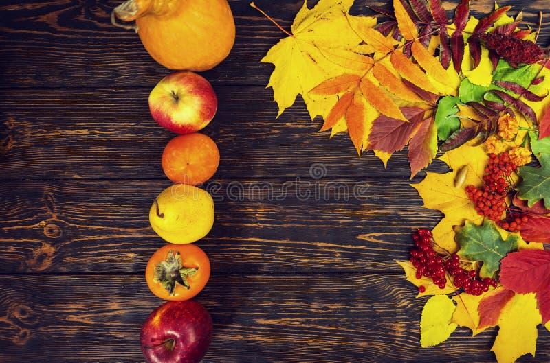 Fundo bonito com Rowan, folhas amarelas do outono, maçã vermelha fotos de stock royalty free