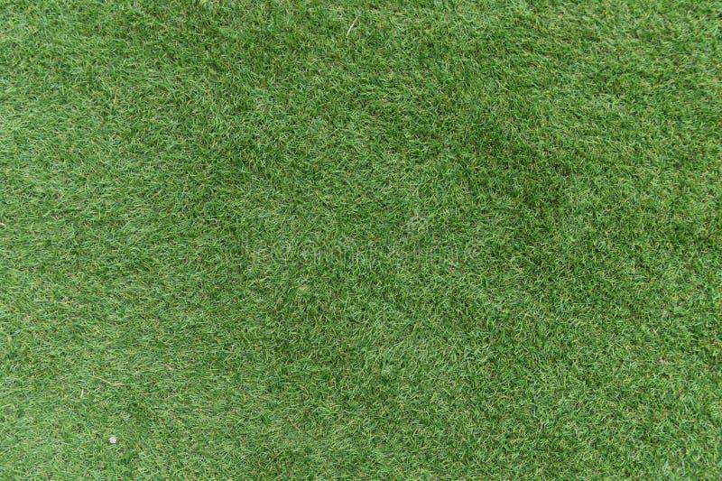 Fundo bonito da grama verde, textura, teste padrão foto de stock royalty free