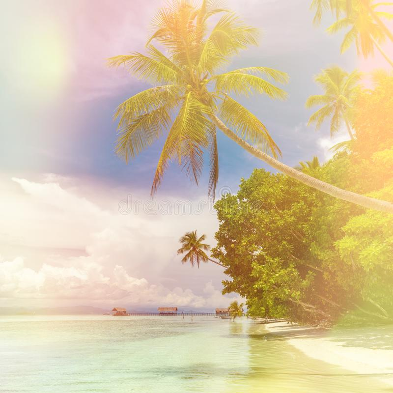 Fundo bonito da ilha do paraíso - paisagem da praia tropical - oceano calmo, palmeiras, céu azul imagens de stock royalty free