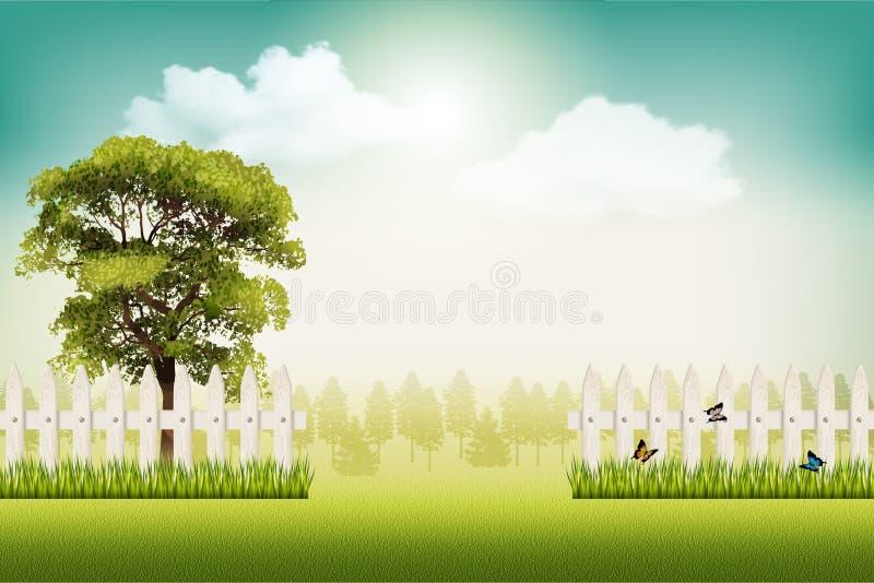 Fundo bonito da paisagem do verão do vetor ilustração do vetor