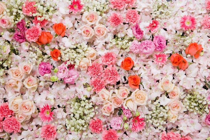 Fundo bonito das flores fotografia de stock