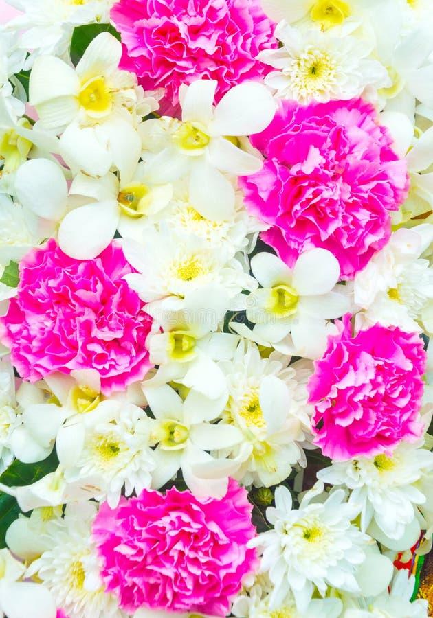 Fundo bonito das flores imagens de stock