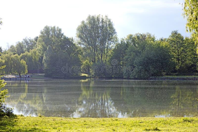 Fundo bonito de Wulfen Barkenberg Dorsten do lago imagem de stock