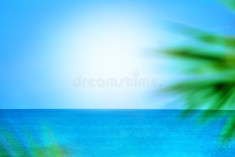 Fundo borrado abstrato, mar azul e céu, luz solar, ramos verdes da palma, conceito de projeto para a bandeira do curso fotografia de stock royalty free