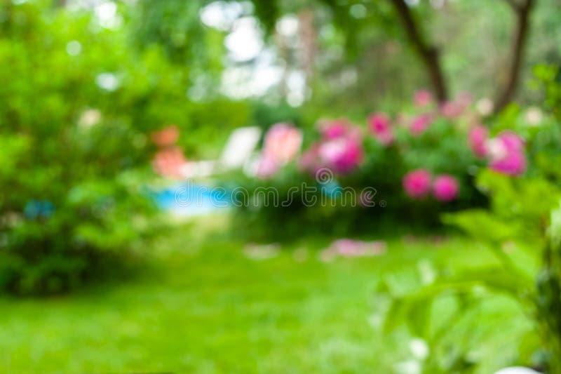 Fundo borrado do jardim com flores da flor, grama e uma associação imagem de stock
