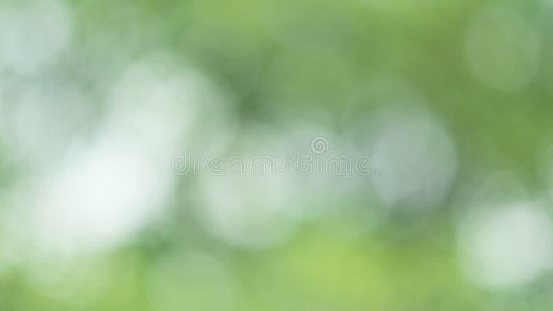 Fundo borrado verde foto de stock