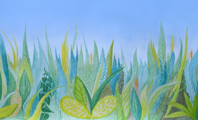 Fundo botânico tirado mão da aquarela Grama azul e verde ilustração royalty free