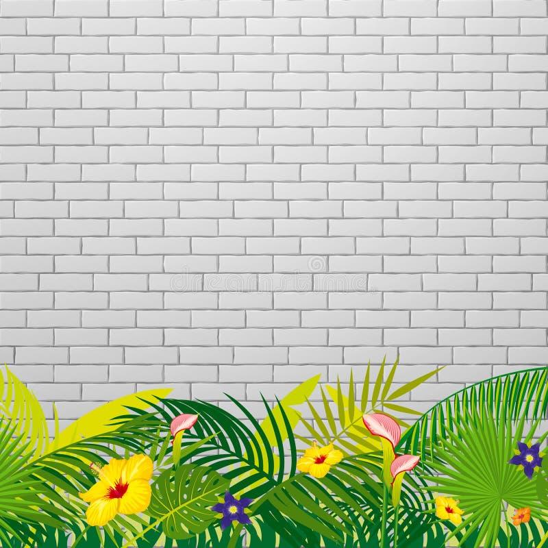 Fundo branco da parede de tijolo com folhas e as flores tropicais ilustração do vetor
