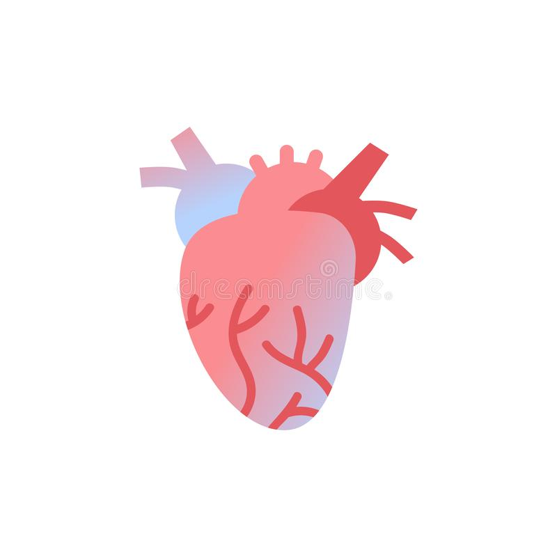 Fundo branco do conceito médico anatômico dos cuidados médicos da anatomia do órgão do corpo humano do ícone do coração ilustração royalty free