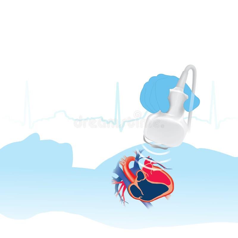 Fundo branco do ecocardiograma ilustração do vetor