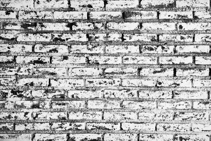 Fundo branco e preto de Grunge de tijolo da parede. ilustração royalty free