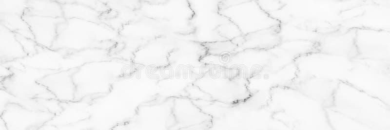 fundo branco elegante horizontal fotografia de stock royalty free