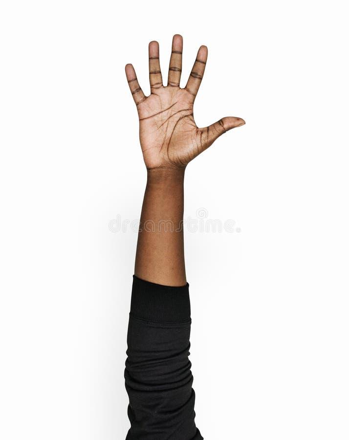 Fundo branco isolado do gesto de mão fotografia de stock royalty free