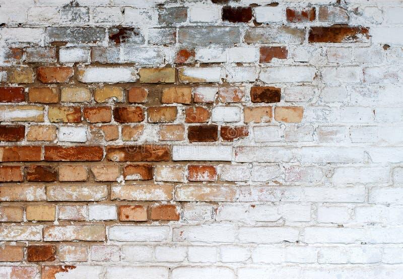 Fundo branco lascado velho da textura da parede de tijolo, parede de tijolo suja whitewashed, fundo branco vermelho do vintage do fotos de stock royalty free