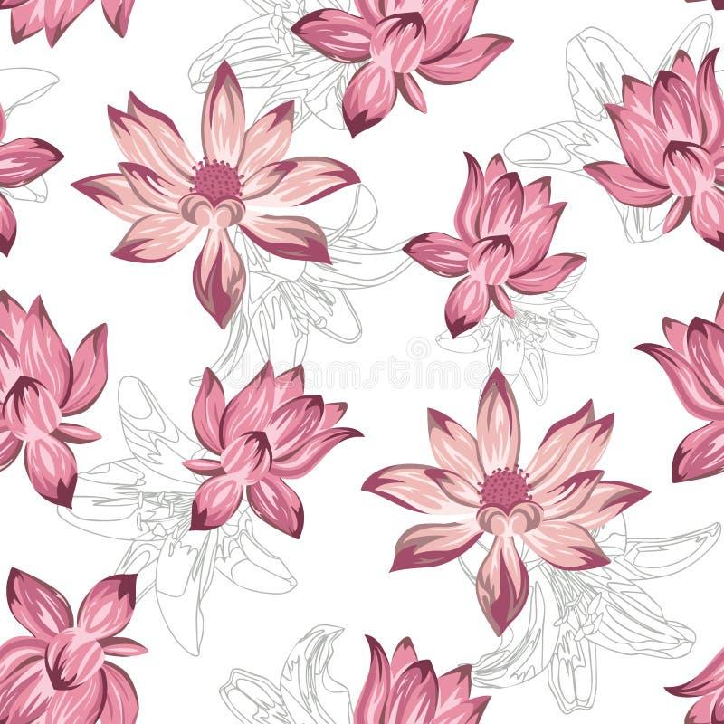 Fundo branco sem emenda dos lótus do rosa ilustração stock