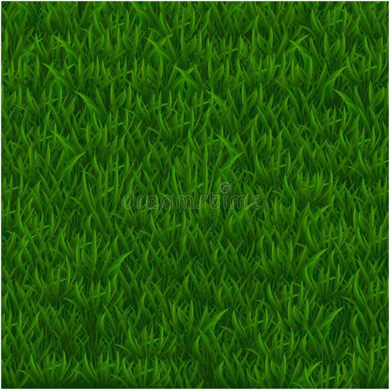 Fundo branco textured realístico do isolado do fundo da grama verde, ilustração do vetor ilustração royalty free