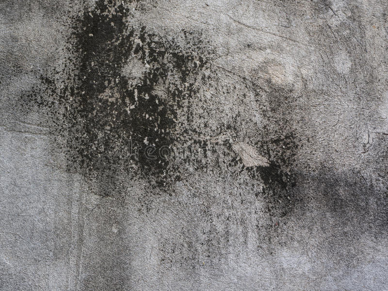 Fundo cinzento da parede imagens de stock