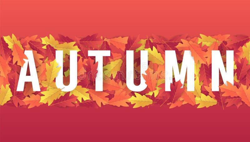 Fundo colorido da bandeira das folhas de outono ilustração royalty free