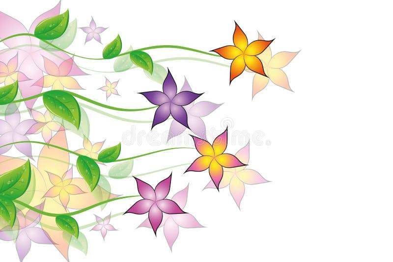 Fundo colorido da flora da gavinha das flores ilustração do vetor