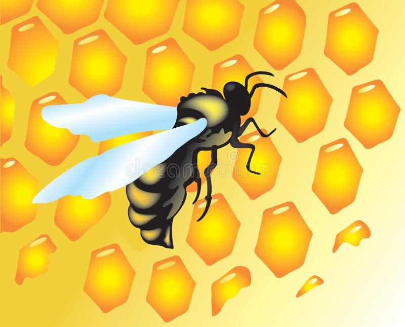 Fundo com abelhas e mel ilustração royalty free