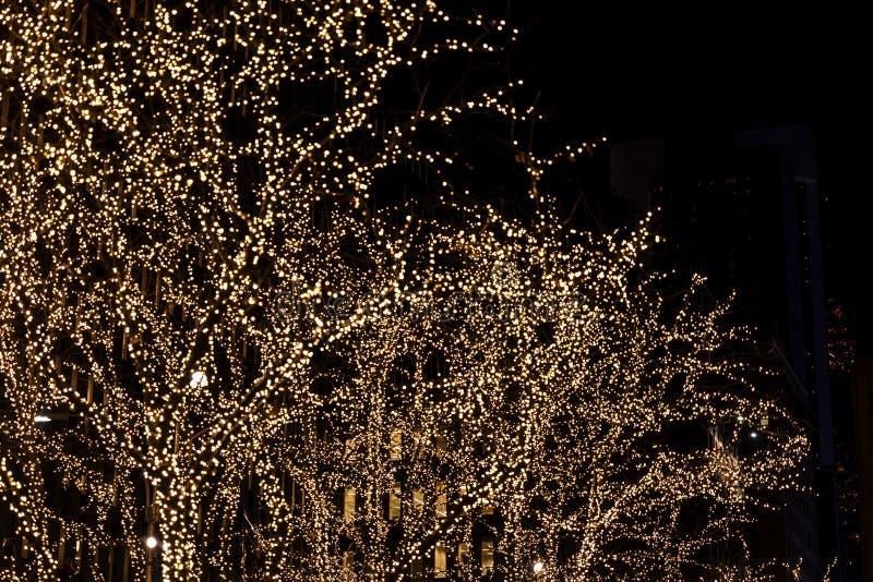 Fundo com as árvores da decoração do Natal na New York imagem de stock