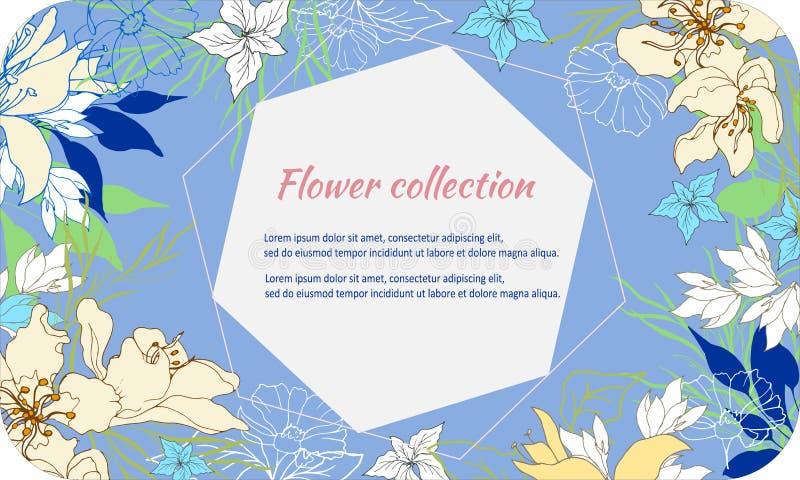 Fundo com as flores pintadas delicadas Frame de texto elegante Flores da mola em um fundo azul Ilustra??o do vetor ilustração do vetor
