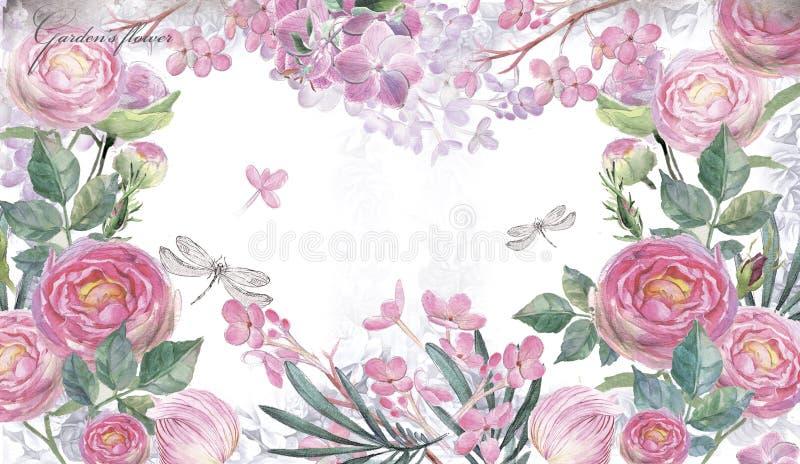 Fundo com as rosas desenhados à mão da aquarela ilustração stock