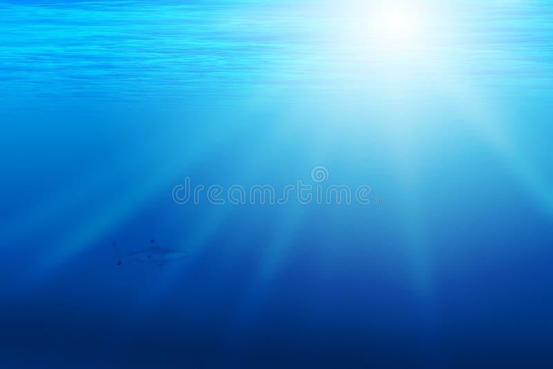 Fundo com cena subaquática imagem de stock