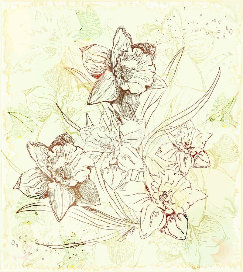 Fundo com daffodils ilustração do vetor