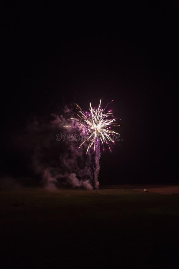 Fundo com Fireworks rosa e dourado com Espaço Livre para Texto imagem de stock royalty free