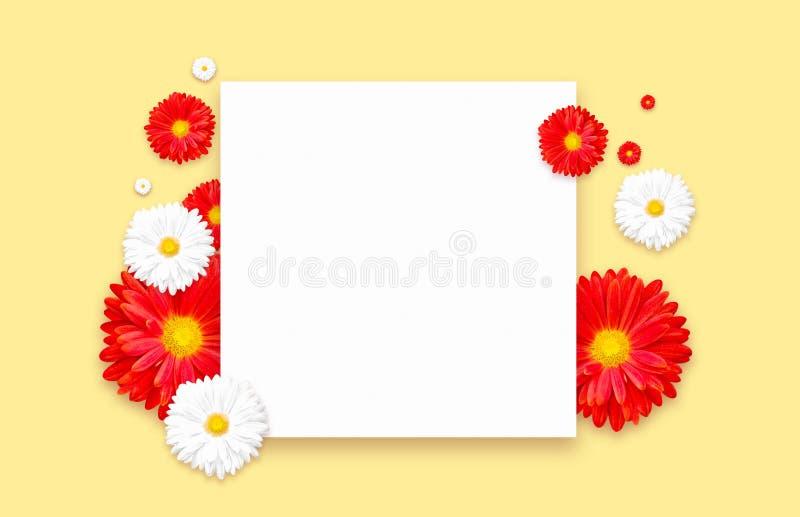 Fundo com a flor colorida bonita Insetos do papel de parede, convite, cartazes, folheto, disconto do comprovante imagens de stock