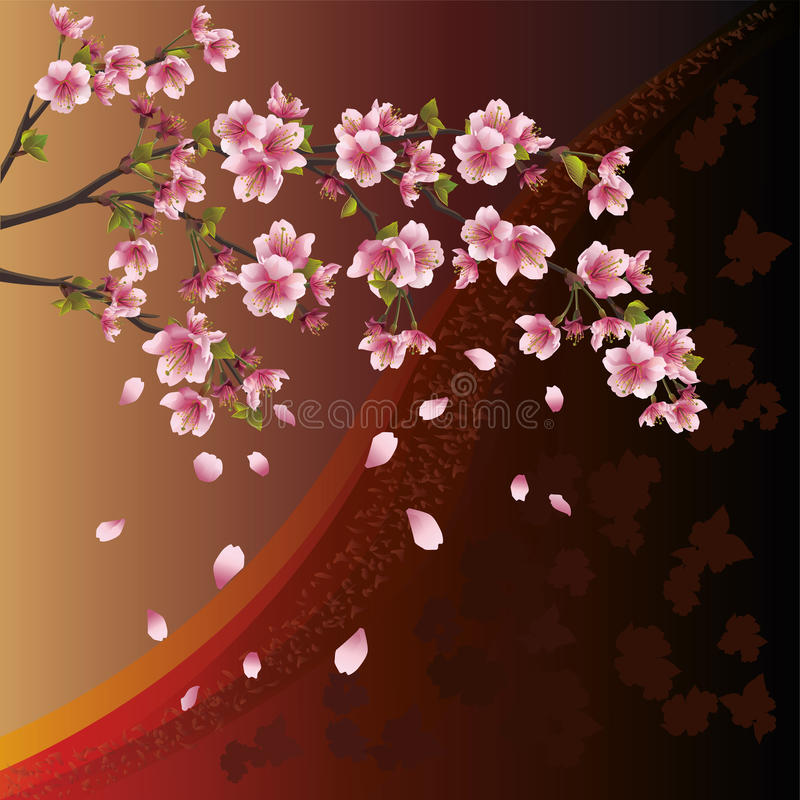 Fundo com flor de sakura - cereja japonesa ilustração stock